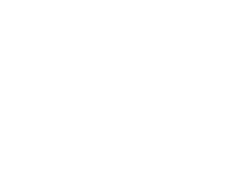 Freddy Bee