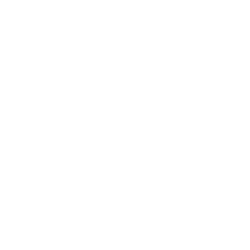 Boardertown
